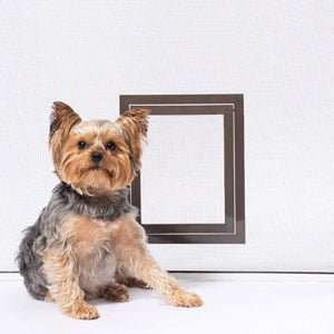 PetSafe Screen Door For Dogs